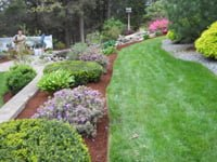 beautifully mulched flower beds