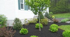 Spring Mulch Special