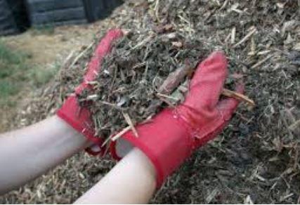 Mulching a Garden