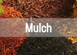 mulch button